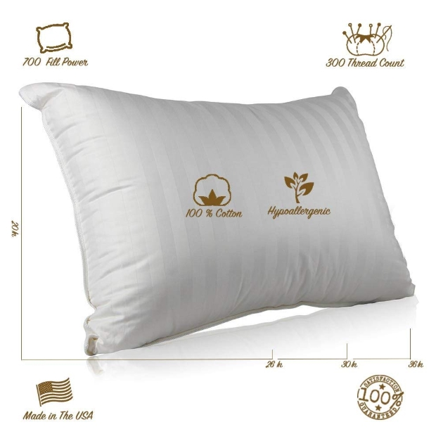 Top 10 Best Down Pillow On Amazon Sleepy Head Pillow Review