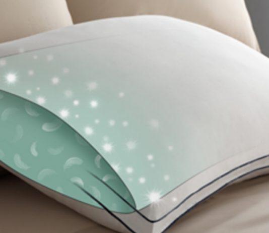 Sleepy Head Pillow Reviews Best Pillow For Neck Pain